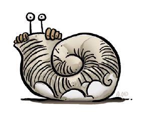 escargot suzy